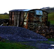 Abandoned Rail Wagon by Trevor Kersley