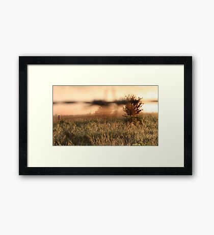 Past and Future 1 Framed Print