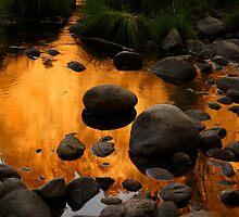 Golden Reflection by Olga Zvereva