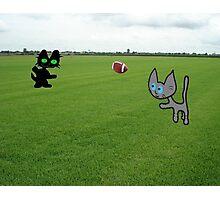 Cats Practice Football Photographic Print