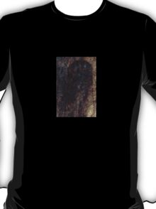 Hairy window 1 T-Shirt