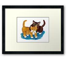Tussle between Two Kittens Framed Print
