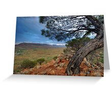 Acacia over Ormiston Pound Greeting Card