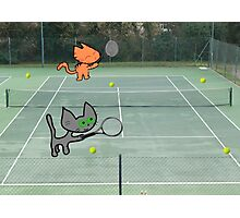 Tennis Cats Photographic Print