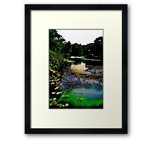 The Lily Pond Framed Print