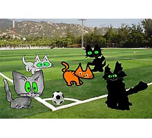 Cats Play Soccer Photographic Print