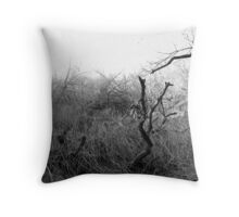 Desolate Waste Throw Pillow