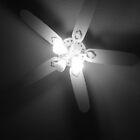 Fan by lroof