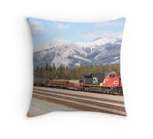 CN 2248 Throw Pillow