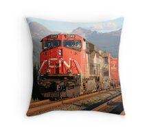 CN 2240 Throw Pillow