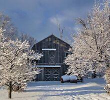Winter Wonderland by Katie Butler