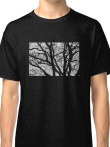 Tilia night silhouette Classic T-Shirt