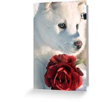 Cordova the Alaskan King Greeting Card