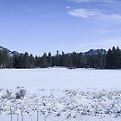Sprague Lake winter panorama by Kevin Williams