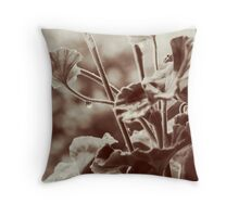 Rainy Morning 1 Throw Pillow
