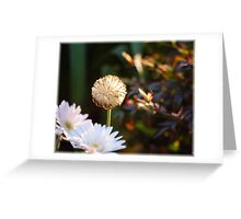Make A Wish: For Trena: Happy Birthday! Greeting Card