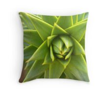 New Growth on Monkey Puzzle Tree Throw Pillow