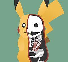 Pikachu Anatomy by lintho