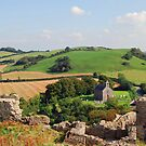 View From Dunamase by Paula Cowley