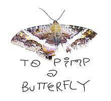 To Pimp A Butterfly  Photographic Print