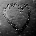 Heart by 405photography