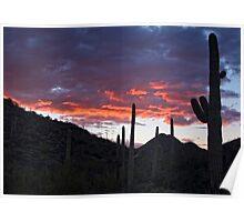 Sundown Tucson  Poster