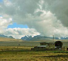 Altiplano Boliviano by Alessandro Pinto
