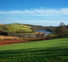 Devon: The River Dart, Near Sharpham by Rob Parsons