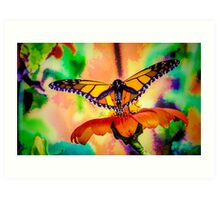Monarch Butterfly & Mexican Sunflower Art Print