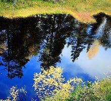 Autumn reflections by Sandra Kemppainen