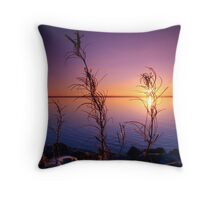 Sunset with plants in foreground Throw Pillow