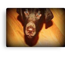 puppy 1 Canvas Print