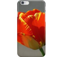 Flaming Tulip! iPhone Case/Skin
