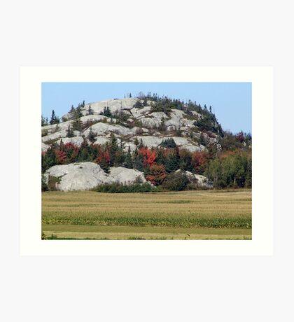 Grass,Trees and Granite Art Print