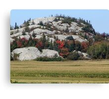 Grass,Trees and Granite Canvas Print