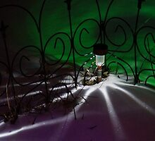 Spider Light in the Snow? by Holly Schimpf
