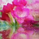 Hot pink Freesia flowers by walstraasart