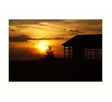 Sunset & Wood Art Print