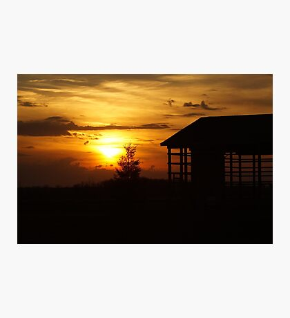 Sunset & Wood Photographic Print