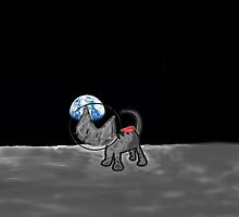Kitten Space Travels to the Moon by JohnsCatzz