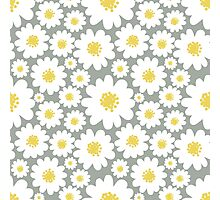 White Daisies Pattern Photographic Print