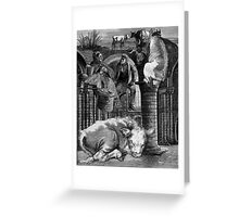 The Lazy Bullocks Dream. Greeting Card