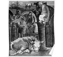 The Lazy Bullocks Dream. Poster