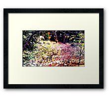 Coloring Garden Framed Print