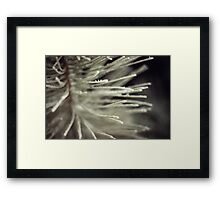 Shadow of the Reality  Framed Print