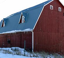 Another view of the Great Barn  by Jellybean720