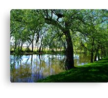 """The Willow"" Canvas Print"