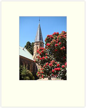 God's glorious flora (Uniting Church, Bacchus Marsh) by Anne van Alkemade