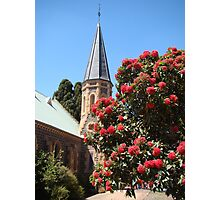 God's glorious flora (Uniting Church, Bacchus Marsh) Photographic Print