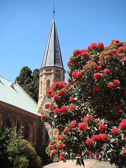 God's glorious flora (Uniting Church, Bacchus Marsh) by Anne van Alkemade